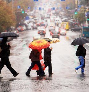 Urban Pedestrians Holding Umbrellas in Rain